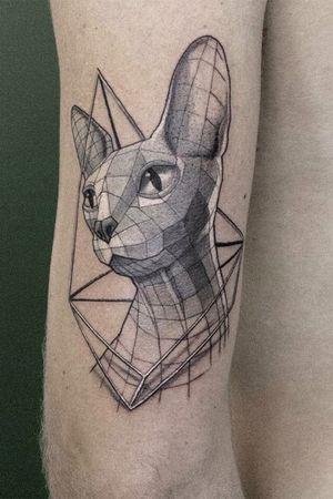 Geometric Sphynx cat for Jelle ✌🏼
