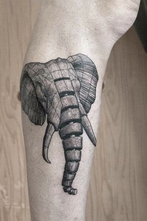Elephant for Herman ✌🏼