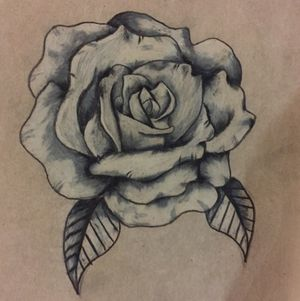 Grayscale rose