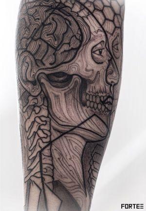 Anatomy inspired geometric skull.