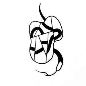 Snake reflect