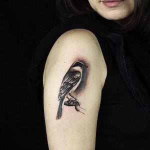 Tattoo by Liam Ryan #LiamRyan #MotorinkFinestTattooing #Amsterdam #realism #realistic #hyperrealism #bird #feathers #wings #nature #animal