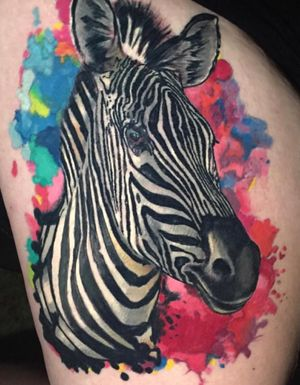 Racing Stripes Zebra Watercolor