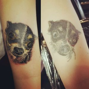 After and before Cover up tattoo #chicago #tattoounion #chicagotattoo #chicagotattooshops #inked #inkedgirl #skinart #inkedmag #dogportrait #art