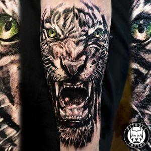 Realistic tiger tattoo #tiger #realistic #phuket #thailand #inkedgirl #blackandgrey #animal #arm #patong #tigertattoo #tattoo #tigertattoo