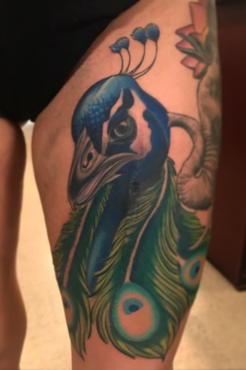 Freehand peacock covering scars