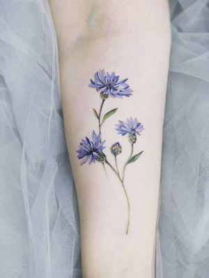 Cornflower by SION (@tattooistsion)  #flowertattoo #floraltattoo #Korea #KoreanArtist #tattooistsion #colortattoo #flower #flowers #oriental #watercolortattoo