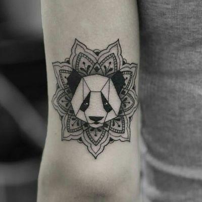 🐼❤ Panda #panda Follow Me Please I Will Follow Back😚