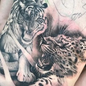 Tattoo by Teneile Napoli #TeneileNapoli #GarageInkManor #Australia #blackandgrey #realism #realistic #tiger #junglecat #cat