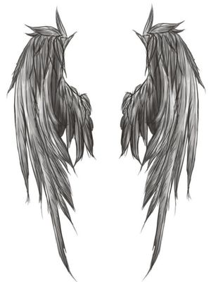 My Angel wings that I wish to have on my all back  might go down to my bum...  I wonder how much it would cost...