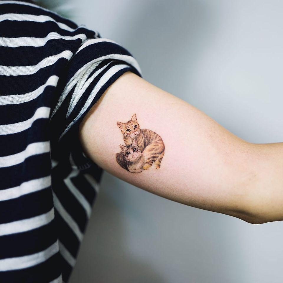 Tattoo by Nando #Nando #cattattoo #cattattoos #cat #kitty #animal #petportrait #nature #realism #realistic #hyperrealism #cuddle #kitties #cute