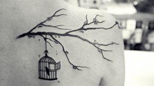 #branches #bird #birdcage