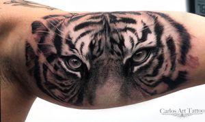 Tiger realistic. #tiger #carlos_art #tenerife #tigre #realistic #cheyennetattooequipment #tattooartist #tattooart #cool #Tattoodo #miamiink #ink #inked #picoftheday