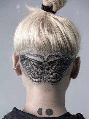 #scalp #moth