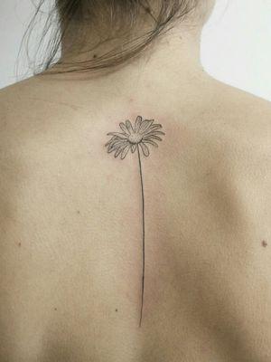#floraltattoo #margaritaflower #flowertattoo #backtattoo