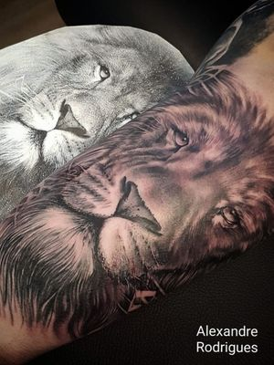 Lion face black and gray tattoo #tattoooftheday #liontattoo #realism #realistictattoo #amsterdamtattoo