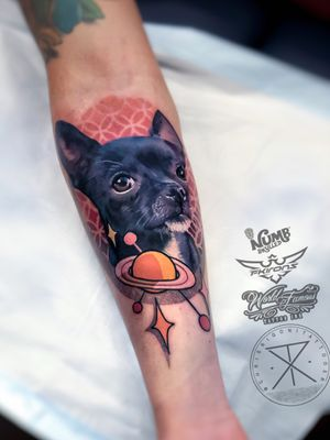 Was fortunate to do another dog portrait today for Francisco from Colombia. Thank you ! @tattoodo Ambassador #tattoodo Tattooed using #worldfamousink @worldfamousink @_numb_skulled #_numb_skulled @fkirons Xion #fkirons #fkironsxion @bloodlinesinknorthperth #bloodlinesinknorthperth #dermalizeproofficial #stencilanchored #sabertattooequipment #chrisrigonitattooer #chrisrigoni #tattoo