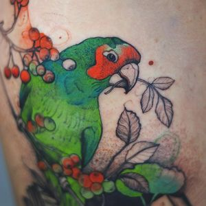 Tattoo by Joanna Świrska aka Dzo Lama #JoannaSwirska #DzoLama #illustrative #nature #sketch #linework #dotwork #parrot #bird #leaves #berries #berry #plants #watercolor