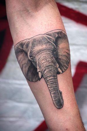 Elephant tattoo black and grey realistic underarm.