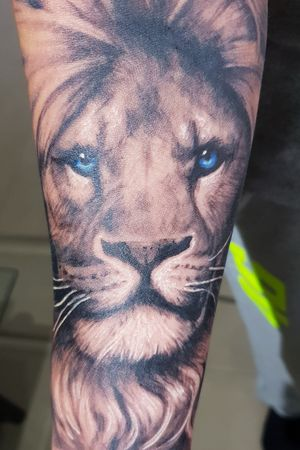 #lion #liontattoo #blueeyes #realism