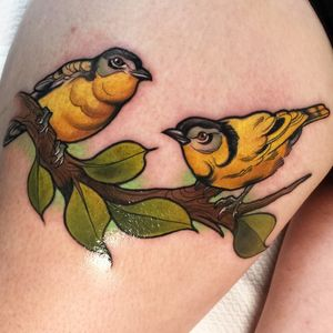 Couple of cute birdies, if you want to get tattooed by me: instagram.com/willemxsm or email me willemxsm@live.nl