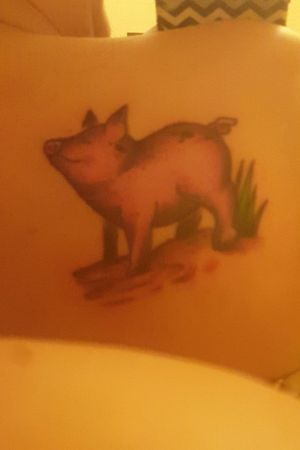 My favorite tattoo out of the 4 I have #pigtattoo #loveit #myfavorite