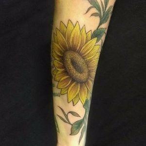 Instagram @amandaclemes #sunflowertattoo #tattoojoinville #tattoo #flower #neotraditional #tatuagem #girassol #sunflower #neotraditionaltattoo #joinville #tattoos #colorfultattoo #flowertattoo #tattoobrasil #brazil #brazilianartist #tatuadorasbrasileiras #tatuadoresdobrasil #tatuadoresbrasileiros #neotradbrasil #neotrad #neotraditionaltattoos #art #exclusivetattoo