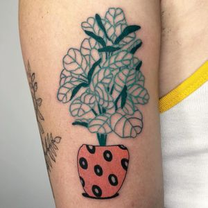 Tattoo by Dane Nicklas #DaneNicklas #planttattoos #planttattoo #plant #nature #pottedplant #leaves #vase