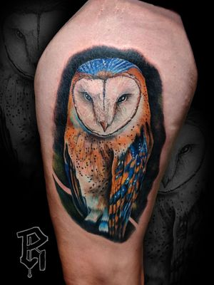 Color Realistic Barn Owl #realism #photorealism #colorportrait #realistictattoo #colorrealism #owltattoos