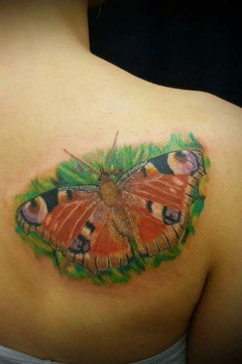 #colourtattoo #butterflytattoo #Butterflies #butterfly  #tattoofrankfurt #tagpfauenaugetattoo #peacockbutterflytattoo