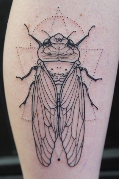 Cicada insect. Bold & fine line + geometric dot pattern . Traditional approach. • #insects #insects #insectphotography #cicadidae #insectsofinstagram #summer #tattoo #tatts #geometry #tattooart #tattooartist #blackart #blackink #blacktattoo #linetattoo #ink #inked #blxckink #blackworktattoo #blackwork #Inkstart #dotwork #dot #traveltattoo #nofilter #amsterdamtattoo #nature #fineline #fineart