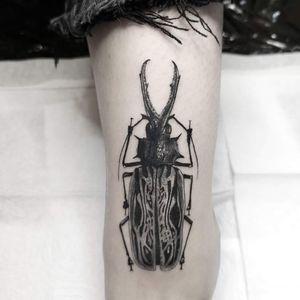Small realistic bug tattoo ❤️ Instagram : @nikita.tattoo #inked #tattoo #details #thinlinetattoo #blackworker #lineworkers #bugtattoo #beetletattoo #blackandgreytattoo #realistictattoo #smalltattoo #realism #blackandgreyrealism #blackandgrey #bugs