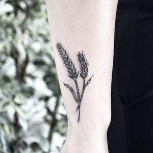 Wheat Tattoo