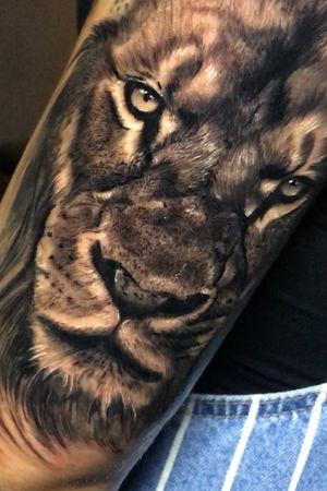 LION // VALENCIA-SPAIN // #vicentecremadestattoo #vicentecremades #ink #tattoo #tattoos #art #artist #design #inked #inkedgirl #tattoogirl #tattoedgirl #thebesttattooartist #thebestspaintattooartists #tbsta #artistasdeltatuaje #thelastbesttattoo #thebestspaintattoo #thebesttattooartistworld #tattooedup #inkstagram #realism #love #tattoolovers #tattooart #bodyart #photooftheday