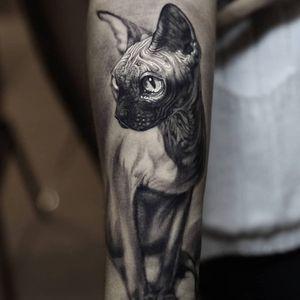 Tattoo by Stefano Alcantara #StefanoAlcantara #cattattoos #cat #kitty #petportrait #animal #nature #sphinx #illustrative #egyptian #darkart