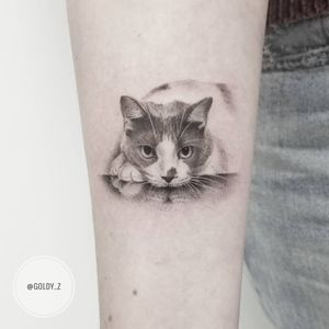 Tattoo by Goldy Z #GoldyZ #cattattoos #cat #kitty #petportrait #animal #nature #realism #realistic #illustrative #charcoal #cute