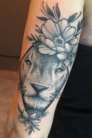 Lion of my wife (pic 2)