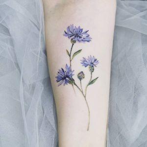 Tattoo by Tattooist Sion #TattooistSion #koreantattooartist #Korea #neotraditional #color #beautiful #flower #folkart #cornflower