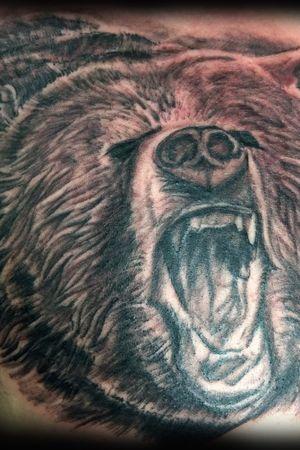Portrait d'ours grizly de face réaliste