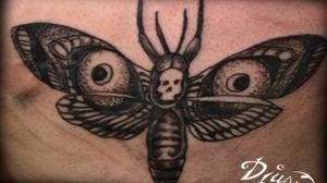 Papillon de la mort papillon de nuit moth dur lappitrine f'un hommr