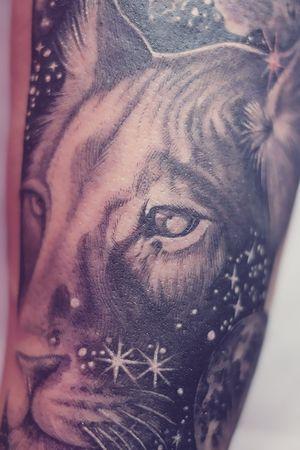 Closeup of lion face
