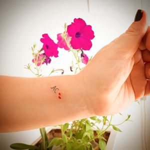 #tinytattoos #lettering #fineline #caligraph #art #tattoo #tatouage #tatuaje #tatuaggio #тату #aurorabeatriz #luttiink #brazil
