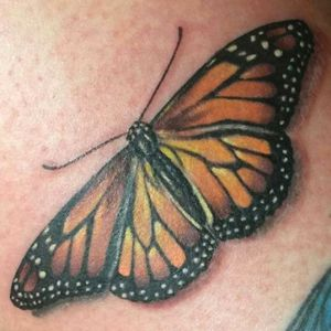 #realism #butterflytattoo #shannonbrowntattoos #localcolortattoos #LocalColorInk #westchesterpa #pennsylvania