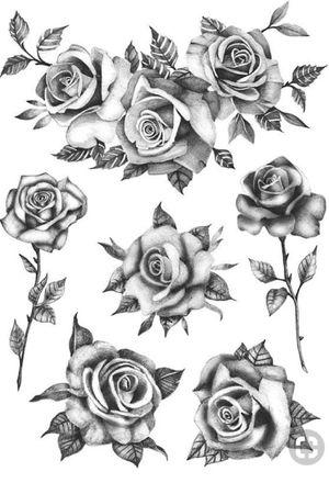 #inspiration #roses #rosetattoo #blackandgrey #sketch #fullback #inked #nevergiveup #flowers #tattoo2me #loveit #beautifultattoo