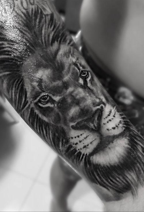 Lion BW 😍