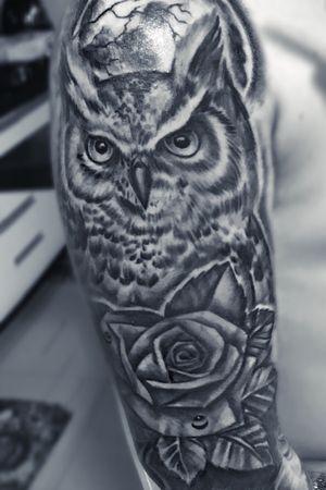 Owl BW 😍