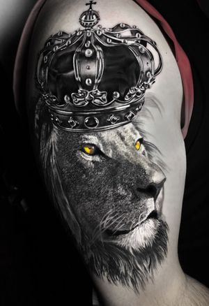 finalizado hoje. 12h de trampo #liontattoo #lion #animal #king #blackandgrey #blackandgreytattoo #intenzepride #crown #inkjecta #inkeeze