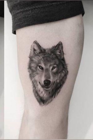#wolf #realism #joel_drossaert_tattoos #antwerp #belgium