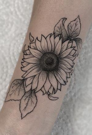 Sunflower love 🌻💕