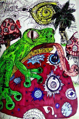 #frogs #mushrooms #drugs